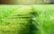 7 nasvetov za popolno košnjo trave