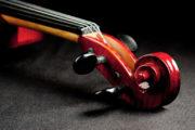 Kako se viola razlikuje od violine?